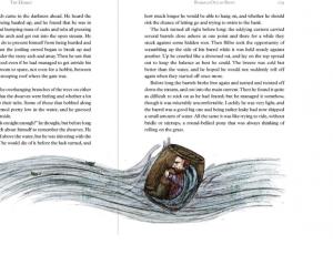Thorin in Barrel